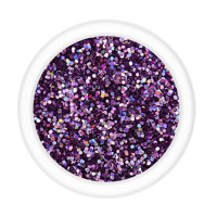 Metallic Glitter - Purple Party (LB901) 15g