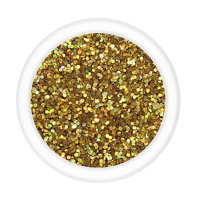 Metallic Glitter - Treasure of Gold (B24) 15g