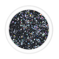 Metallic Glitter - TV Screen (LB1008) 15g